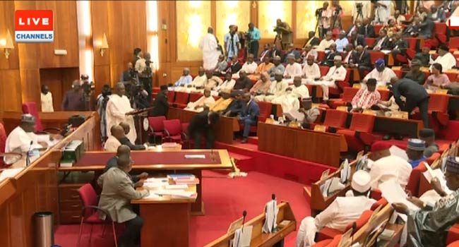 Senate Screening Of Ministerial Nominees Continues