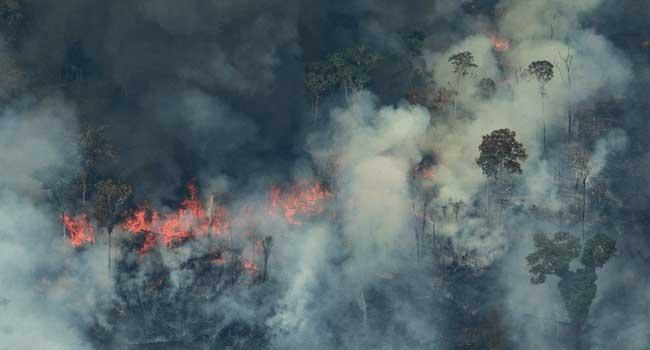 Trump Praises Bolsonaro's Efforts On Amazon Fires