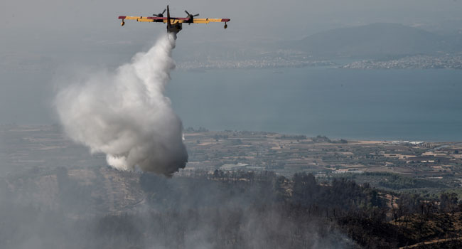 Ecological Disaster: Firefighters Battle Fire On Greek Island