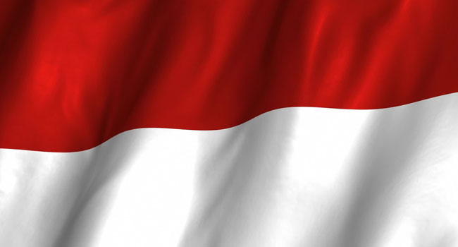 6.2-Magnitude Earthquake Hits Indonesia's Northwest