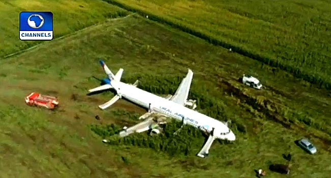 Russian Aircraft With 230 Passengers Makes Emergency Landing In Cornfield