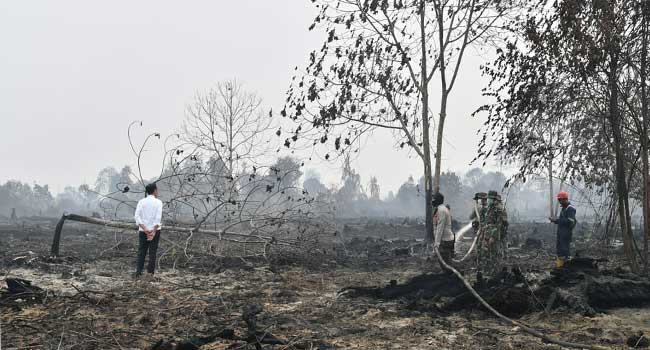 Indonesia Deploys 6,000 Troops To Battle Forest Fires