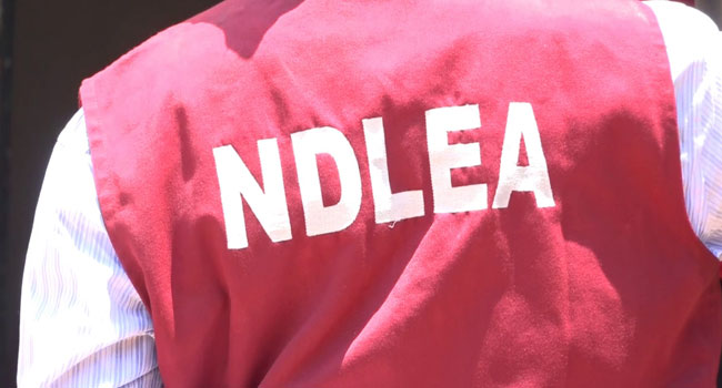 NDLEA Arrests 196 Suspected Drug Dealers In Taraba