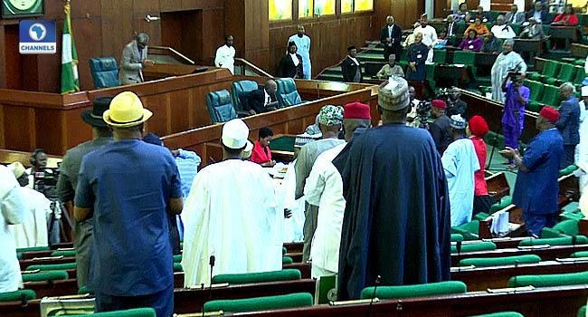 Air Peace Boss Receives Standing Ovation At House Of Reps