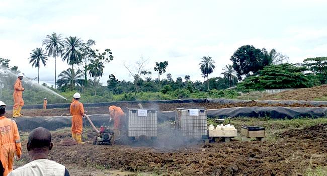 Ogoni Oil Spillage: Contempt Charge Filed Against CBN Governor Over N182 Billion Judgment Debt