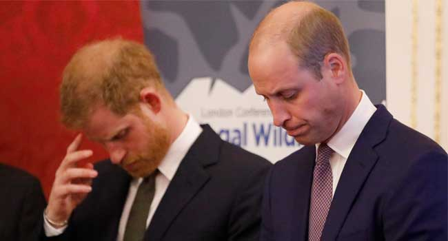 Prince William, Harry Slam 'False' Story About Their Relationship