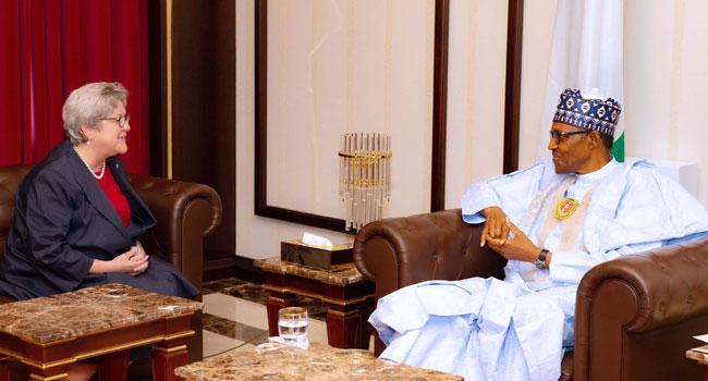 Ensure Your Source Of Information Cut Across, Buhari Tells US Envoy