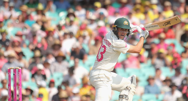 Labuschagne Hits Ton Against New Zealand
