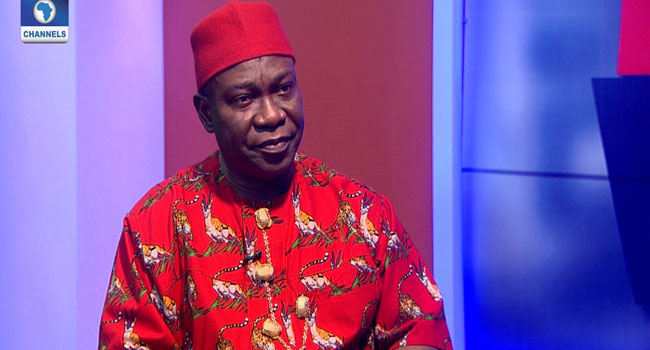 Introduction Of Community Policing Is A Fraud, Says Ekweremadu