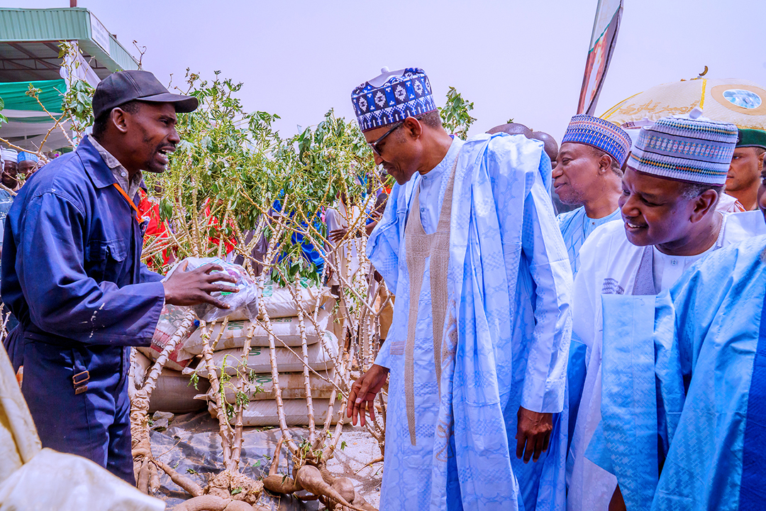 President Muhammadu Buhari (second left) listens during the Grand Finale of the Argungu International Agricultural Show and Cultural Festival in Kebbi State on March, 12, 2020. Photo: Bayo Omoboriowo / State House