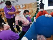 Thai Food and Drug Administration employees put heroin in a trolley to be incinerated to mark the United Nations' International Day against Drug Abuse and Illicit Trafficking at the Bang Pa-In industrial estate in Ayutt