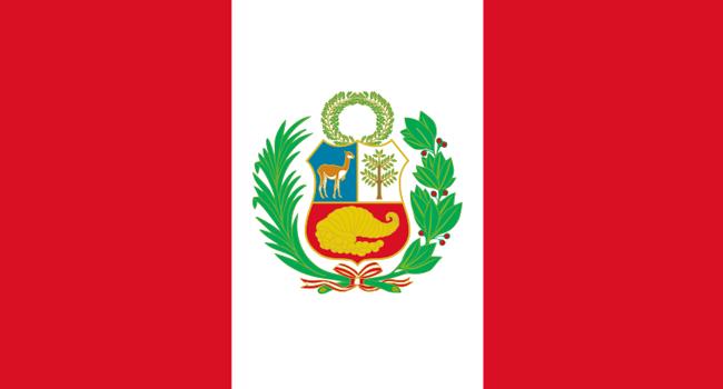 Coronavirus Kills 20 Journalists In Peru – Union