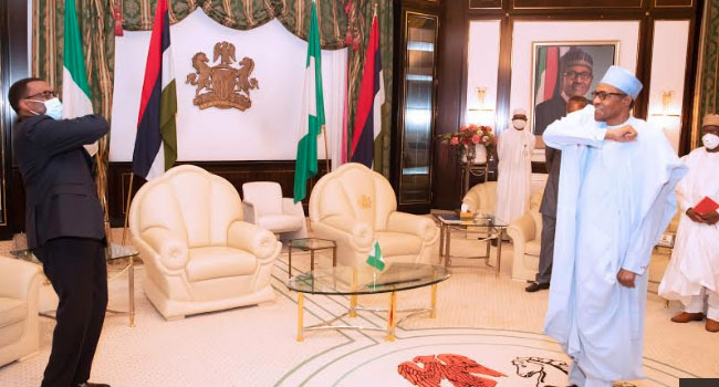 Nigeria Will Stand By You, Buhari Tells AfDB President Adesina
