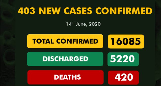 Nigeria's COVID-19 Cases Surpass 16,000 As Gombe Tops Daily Infections