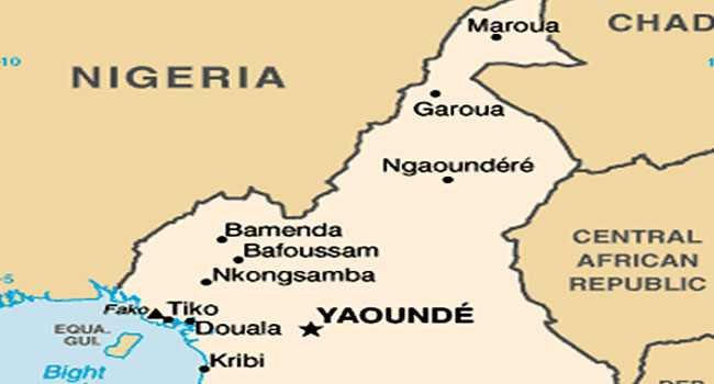 Cameroon Rebels Kill Six At Army Post, Says Govt