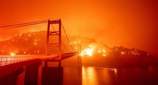 Wildfires Devastate US West Coast, At Least Seven Dead