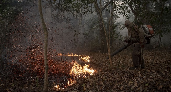 Rainfall Becomes 'Only Hope' As Brazil's Wetlands Burn