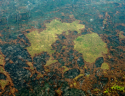 Aerial file photo taken on August 24, 2019 of burnt areas of the Amazon rainforest, near Boca do Acre, Amazonas state, Brazil, in the Amazon basin. Lula SAMPAIO / AFP