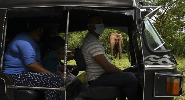 Sri Lanka Sets Visitor Restrictions As It Reopens For Foreign Tourists