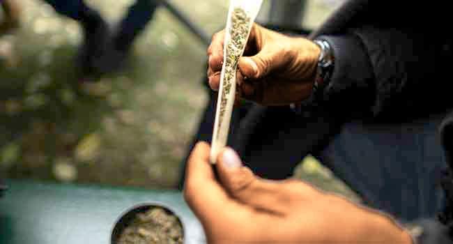 Legalising Cannabis Will Turn Nigeria To Nation Of Junkies – Marwa