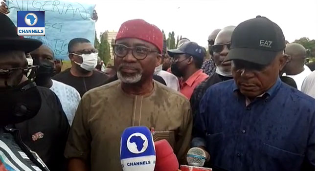 PDP Leaders Storm NASS To Protest Onochie's Nomination As INEC Commissioner