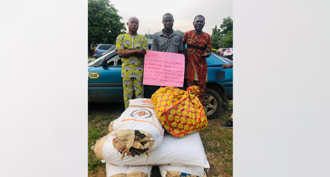 NURTW Chairman Arrested For Drug Trafficking In Ondo