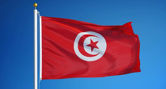 Tunisia Health Minister Sacked Over Virus – Statement