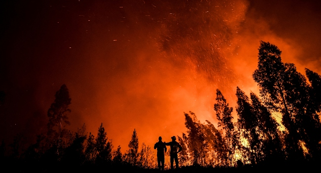 Portugal Battles Wildfire As Heatwave Persists