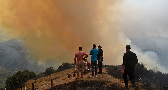Algeria To Review Relations With Morocco After Forest Fires