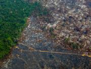Aerial file photo taken on August 28, 2019 of deforestation in Nascentes da Serra do Cachimbo Biological Reserve in Altamira, Para state, Brazil, in the Amazon basin. Joao LAET / AFP