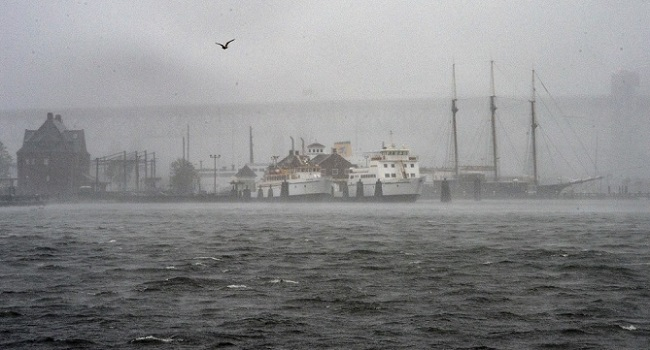 Rare Tropical Storm Downgraded After Hitting US Northeast