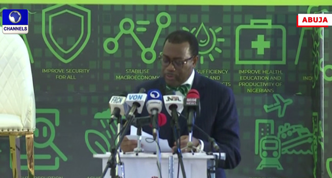 Youths Need Investments And Not Handouts, Says Adesina